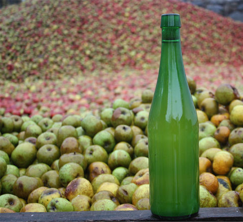 Cider Season 2019 Iruin